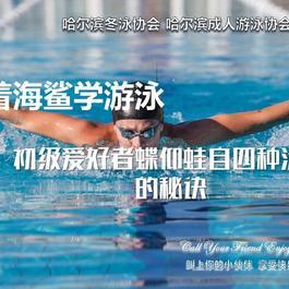 怎樣學游泳 游泳新手教程 哈爾濱游泳協會入門推薦教程 游泳全面教程分享